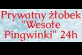 Weronika Ziarnek Prywatny żłobek Wesołe Pingwinki 24h